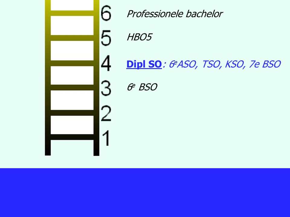 Professionele bachelor HBO5 Dipl SO: 6 e ASO, TSO, KSO, 7e BSO 6 e BSO