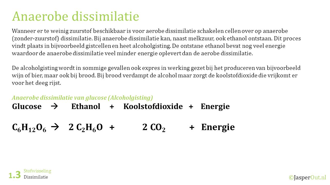 Stofwisseling 1.3 ©JasperOut.nl Dissimilatie Anaerobe dissimilatie Wanneer er te weinig zuurstof beschikbaar is voor aerobe dissimilatie schakelen cellen over op anaerobe (zonder-zuurstof) dissimilatie.