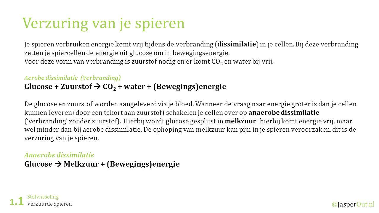 Stofwisseling 1.1 ©JasperOut.nl Verzuurde Spieren Verzuring van je spieren Je spieren verbruiken energie komt vrij tijdens de verbranding (dissimilatie) in je cellen.