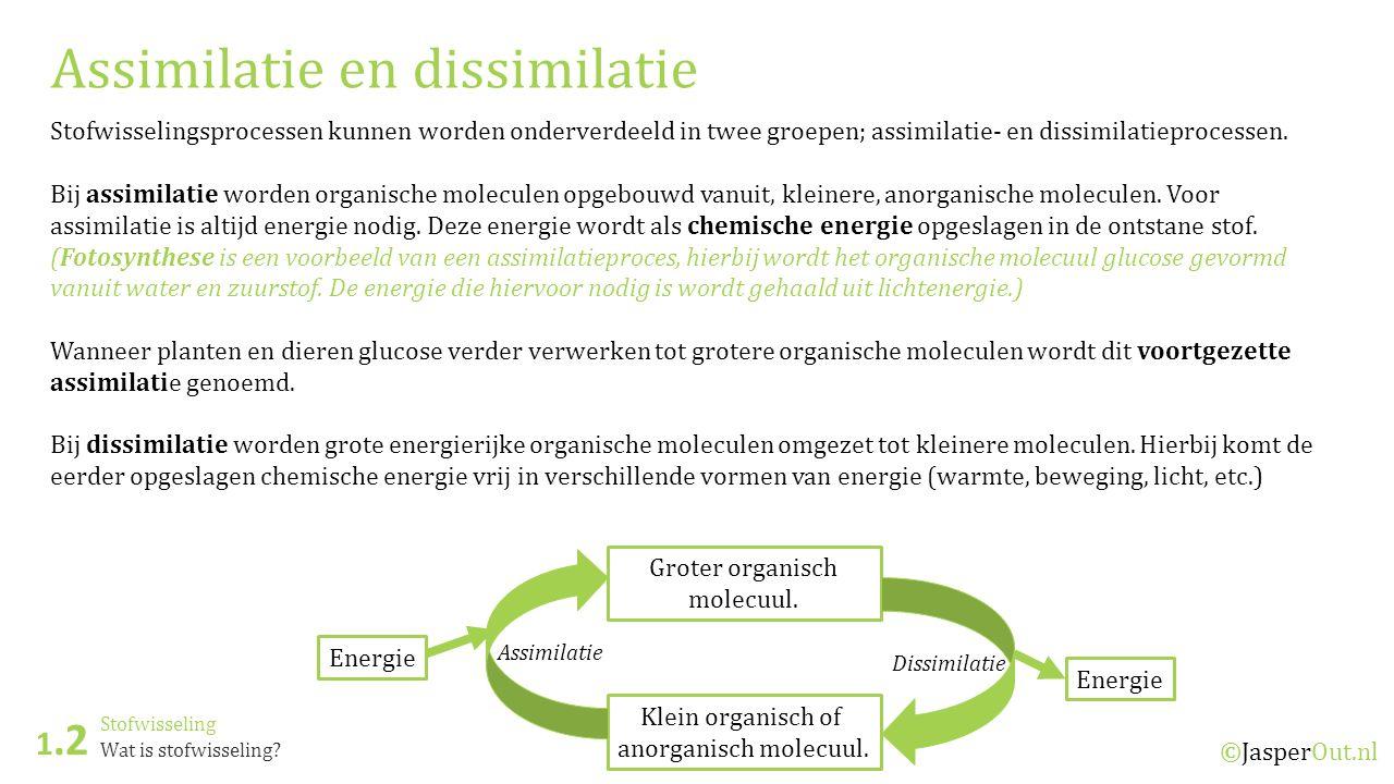 Stofwisseling 1.2 ©JasperOut.nl Wat is stofwisseling? Assimilatie en dissimilatie Stofwisselingsprocessen kunnen worden onderverdeeld in twee groepen;