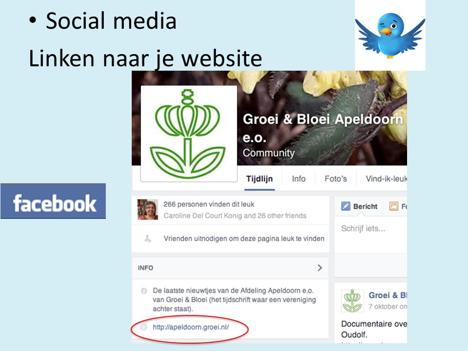 Social media Linken naar je website