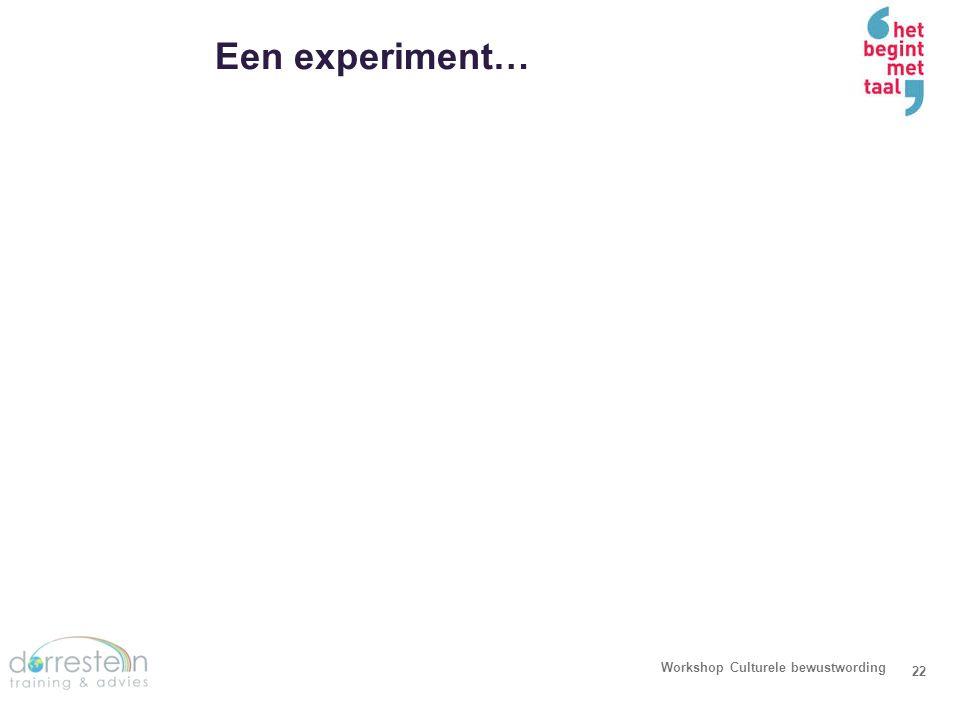 Een experiment… Workshop Culturele bewustwording 22