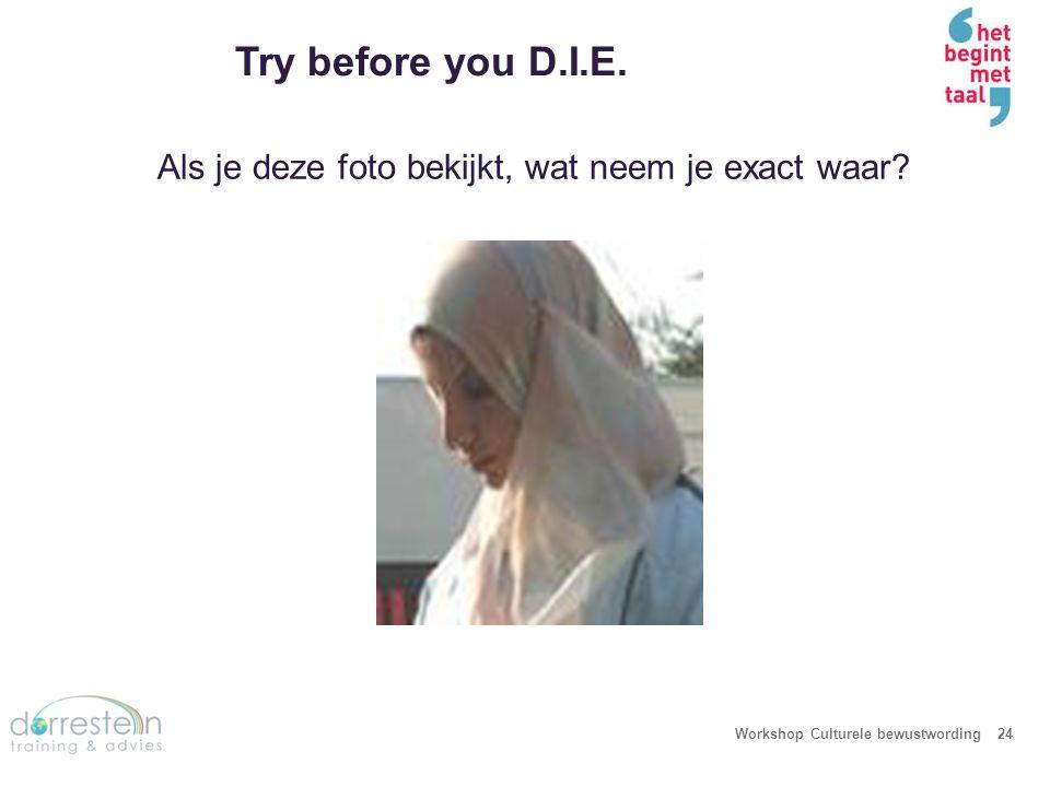 Try before you D.I.E. Workshop Culturele bewustwording24 Als je deze foto bekijkt, wat neem je exact waar?