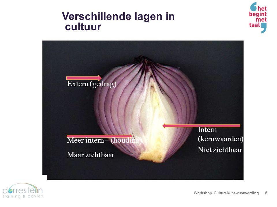 Verschillende lagen in cultuur Workshop Culturele bewustwording8 Extern (gedrag) Meer intern – (houding) Maar zichtbaar Intern (kernwaarden) Niet zich