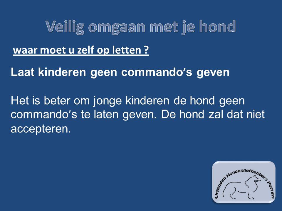 waar moet u zelf op letten ? Laat kinderen geen commando ' s geven Het is beter om jonge kinderen de hond geen commando ' s te laten geven. De hond za
