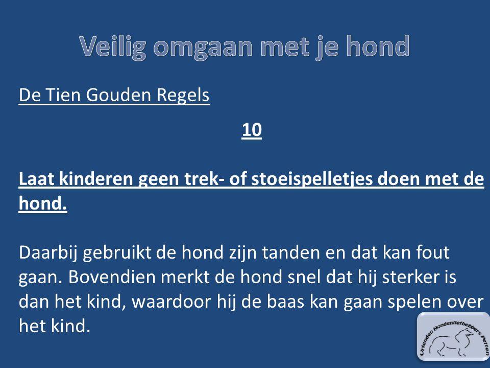 De Tien Gouden Regels 10 Laat kinderen geen trek- of stoeispelletjes doen met de hond.