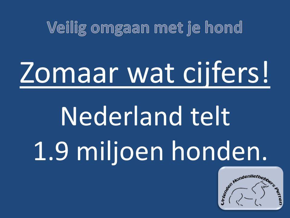 Zomaar wat cijfers! Nederland telt 1.9 miljoen honden.