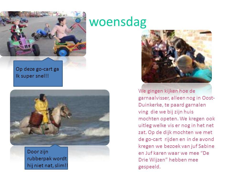 woensdag We gingen kijken hoe de garnaalvisser, alleen nog in Oost- Duinkerke, te paard garnalen ving die we bij zijn huis mochten opeten.
