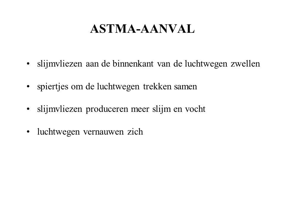 ASTMA-AANVAL slijmvliezen aan de binnenkant van de luchtwegen zwellen spiertjes om de luchtwegen trekken samen slijmvliezen produceren meer slijm en vocht luchtwegen vernauwen zich