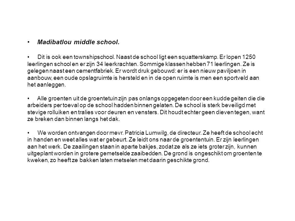 Madibatlou middle school. Dit is ook een townshipschool.