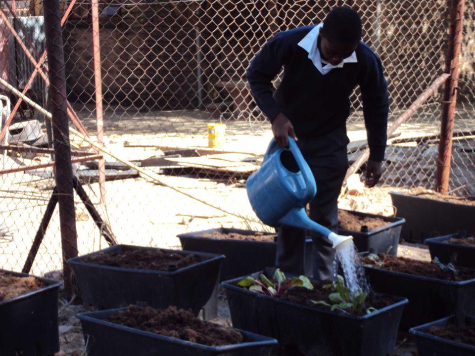 Madibatlou middle school.Dit is ook een townshipschool.