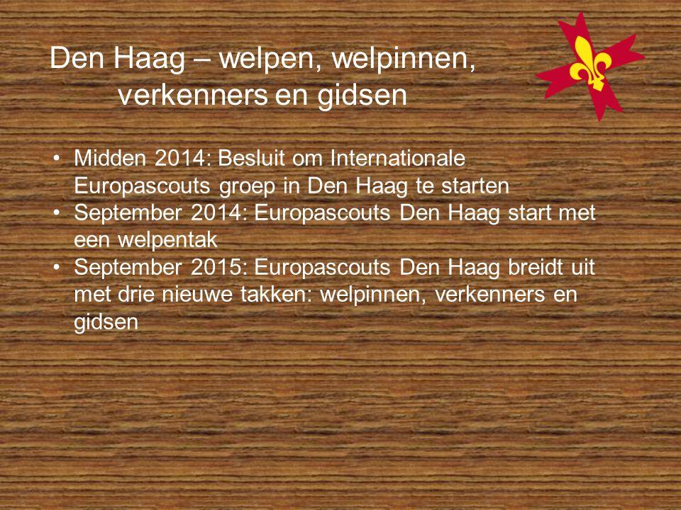 Midden 2014: Besluit om Internationale Europascouts groep in Den Haag te starten September 2014: Europascouts Den Haag start met een welpentak Septemb