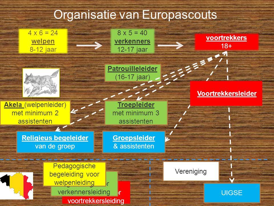 Pedagogische begeleiding voor voortrekkersleiding Pedagogische begeleiding voor verkennersleiding Organisatie van Europascouts 4 x 6 = 24 welpen 8-12