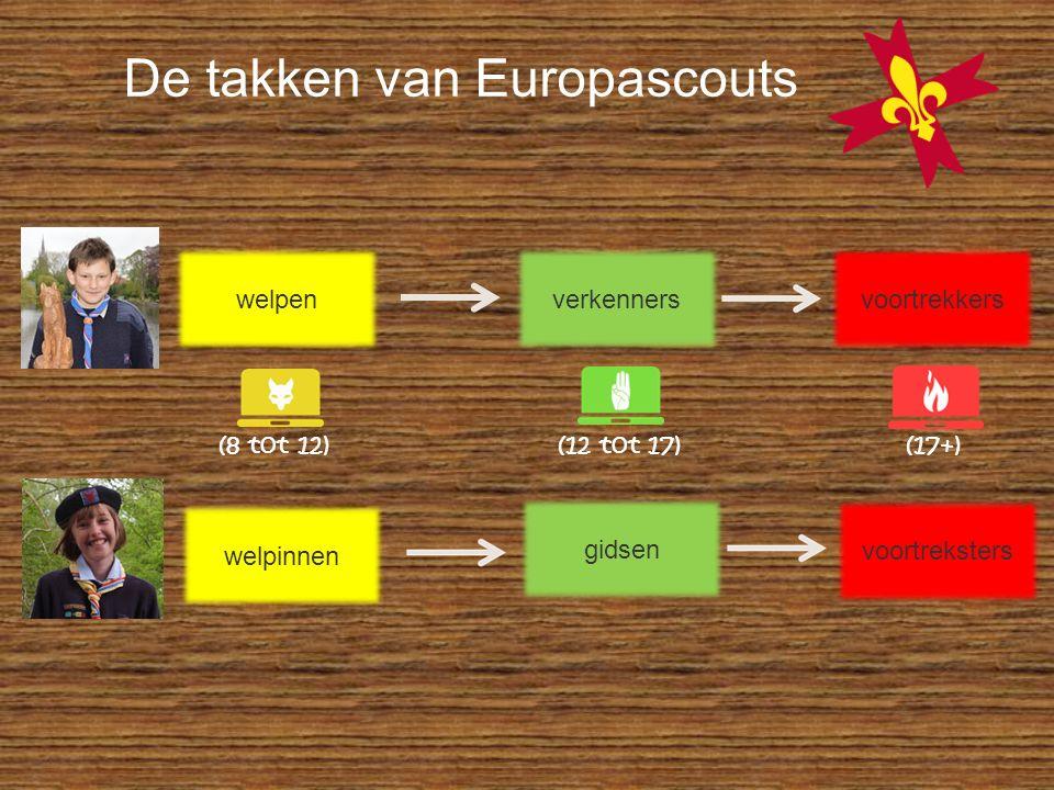 welpinnen gidsen voortreksters (8 tot 12) (12 tot 17) (17+) De takken van Europascouts welpenverkennersvoortrekkers