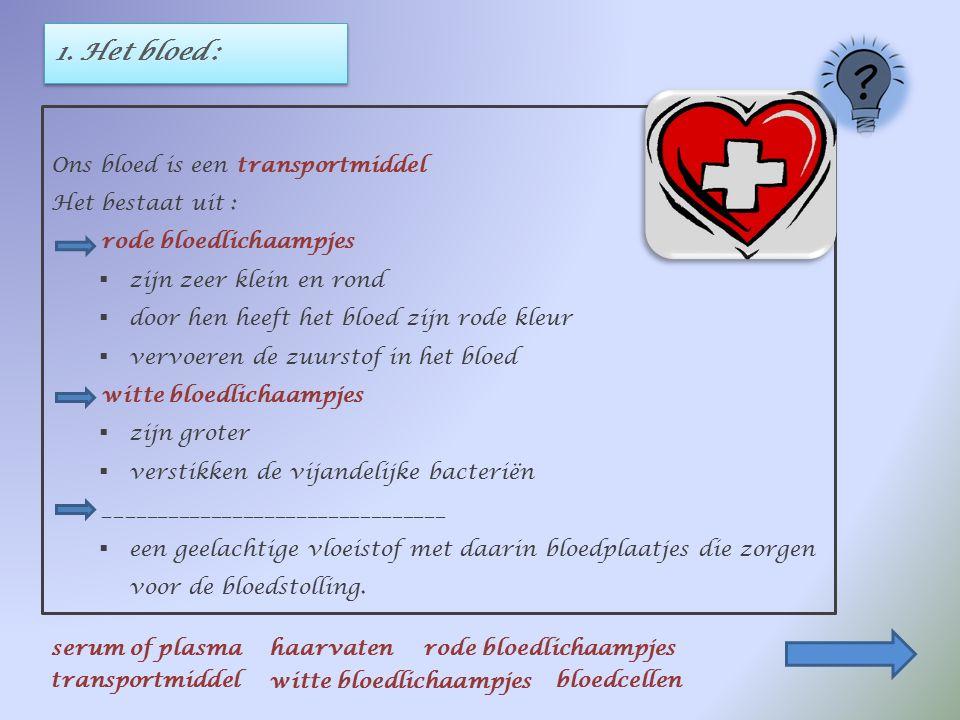 1. Het bloed : Ons bloed is een transportmiddel Het bestaat uit : rode bloedlichaampjes  zijn zeer klein en rond  door hen heeft het bloed zijn rode