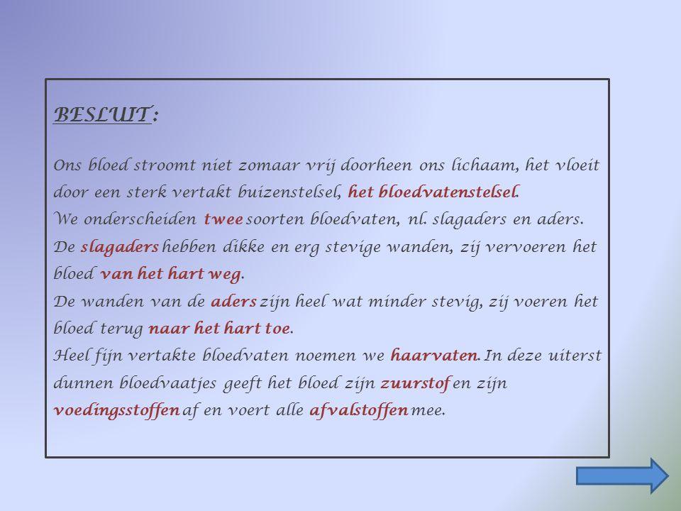 1. De bloedvaten : Ik bestudeer de zichtbare bloedvaten (pols,ogen…). Als ik in een bloedvat snij, bloedt dit dan altijd evenveel ?