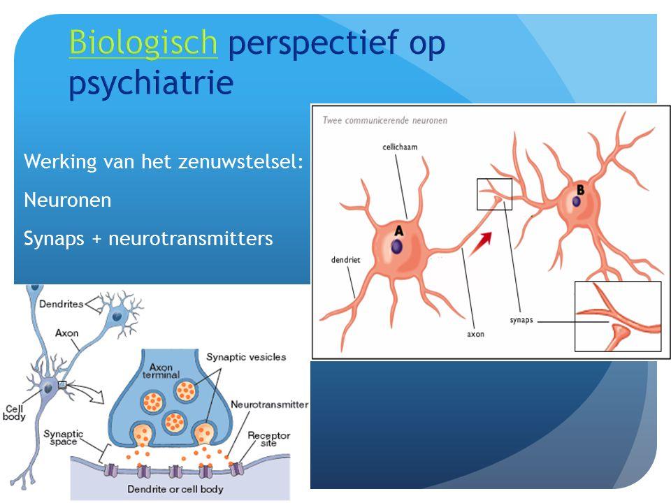 Werking van het zenuwstelsel: Neuronen Synaps + neurotransmitters