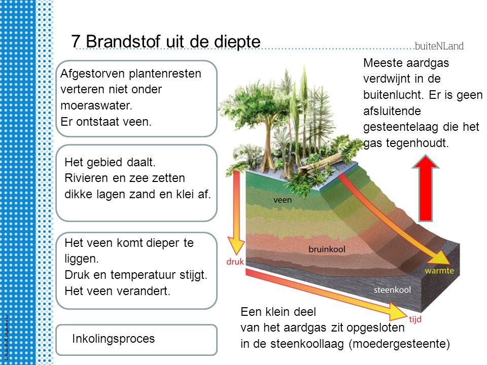 7 Brandstof uit de diepte Afgestorven plantenresten verteren niet onder moeraswater. Er ontstaat veen. Het gebied daalt. Rivieren en zee zetten dikke