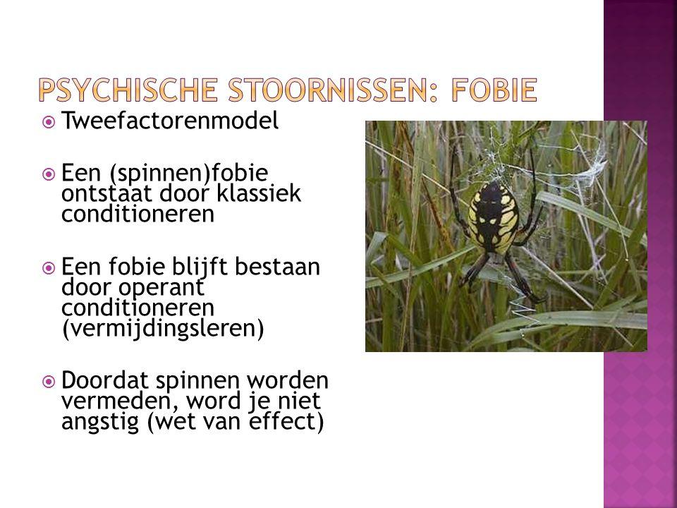  Tweefactorenmodel  Een (spinnen)fobie ontstaat door klassiek conditioneren  Een fobie blijft bestaan door operant conditioneren (vermijdingsleren)