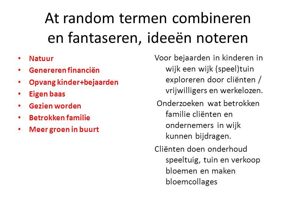At random termen combineren en fantaseren, ideeën noteren Natuur Genereren financiën Opvang kinder+bejaarden Eigen baas Gezien worden Betrokken famili