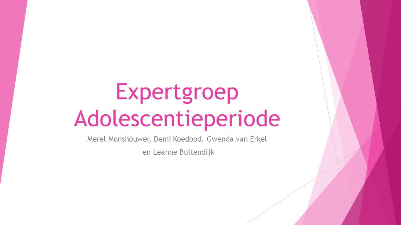 Expertgroep Adolescentieperiode Merel Monshouwer, Demi Koedood, Gwenda van Erkel en Leanne Buitendijk