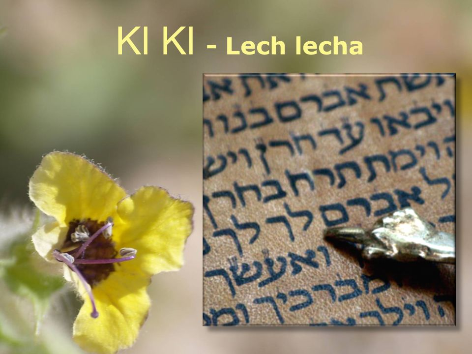 Kl Kl - Lech lecha paleo hebreeuws Gaan doe je met de staf in je hand