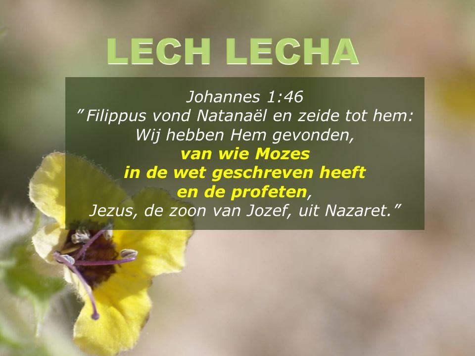 Johannes 1:46 Filippus vond Natanaël en zeide tot hem: Wij hebben Hem gevonden, van wie Mozes in de wet geschreven heeft en de profeten, Jezus, de zoon van Jozef, uit Nazaret.