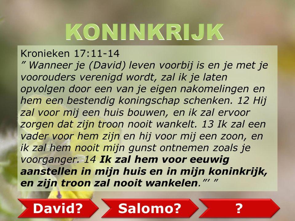 Kronieken 17:11-14 Wanneer je (David) leven voorbij is en je met je voorouders verenigd wordt, zal ik je laten opvolgen door een van je eigen nakomelingen en hem een bestendig koningschap schenken.