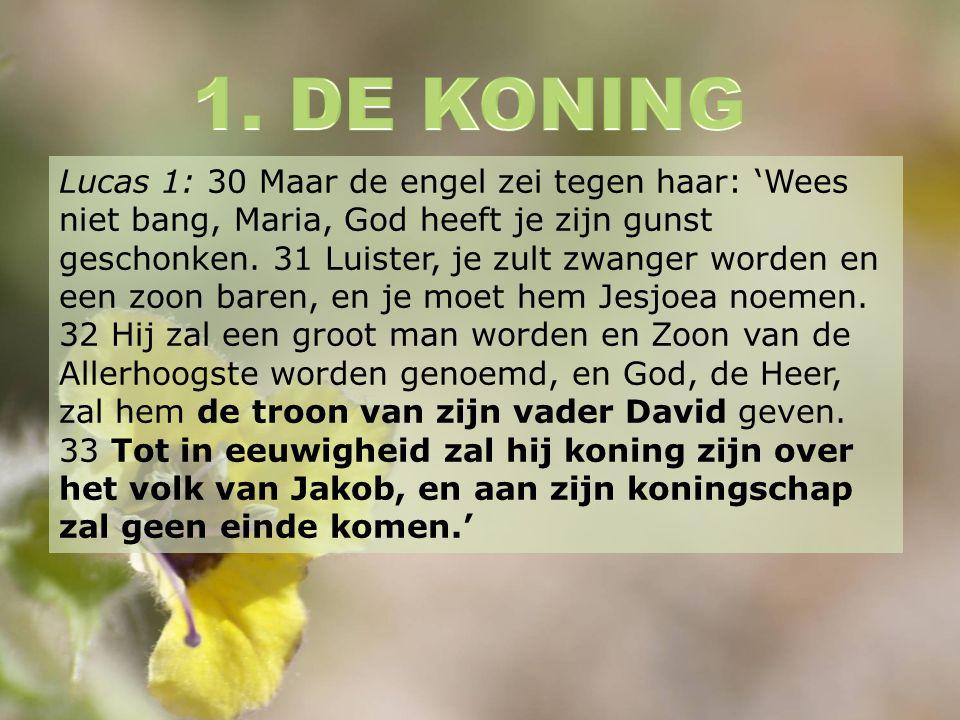 Lucas 1: 30 Maar de engel zei tegen haar: 'Wees niet bang, Maria, God heeft je zijn gunst geschonken.
