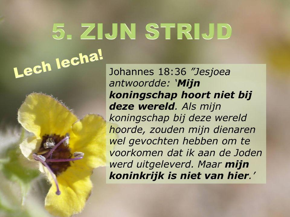 Johannes 18:36 Jesjoea antwoordde: 'Mijn koningschap hoort niet bij deze wereld.