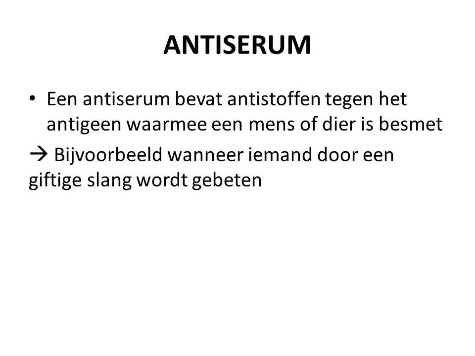 ANTISERUM Een antiserum bevat antistoffen tegen het antigeen waarmee een mens of dier is besmet  Bijvoorbeeld wanneer iemand door een giftige slang wordt gebeten