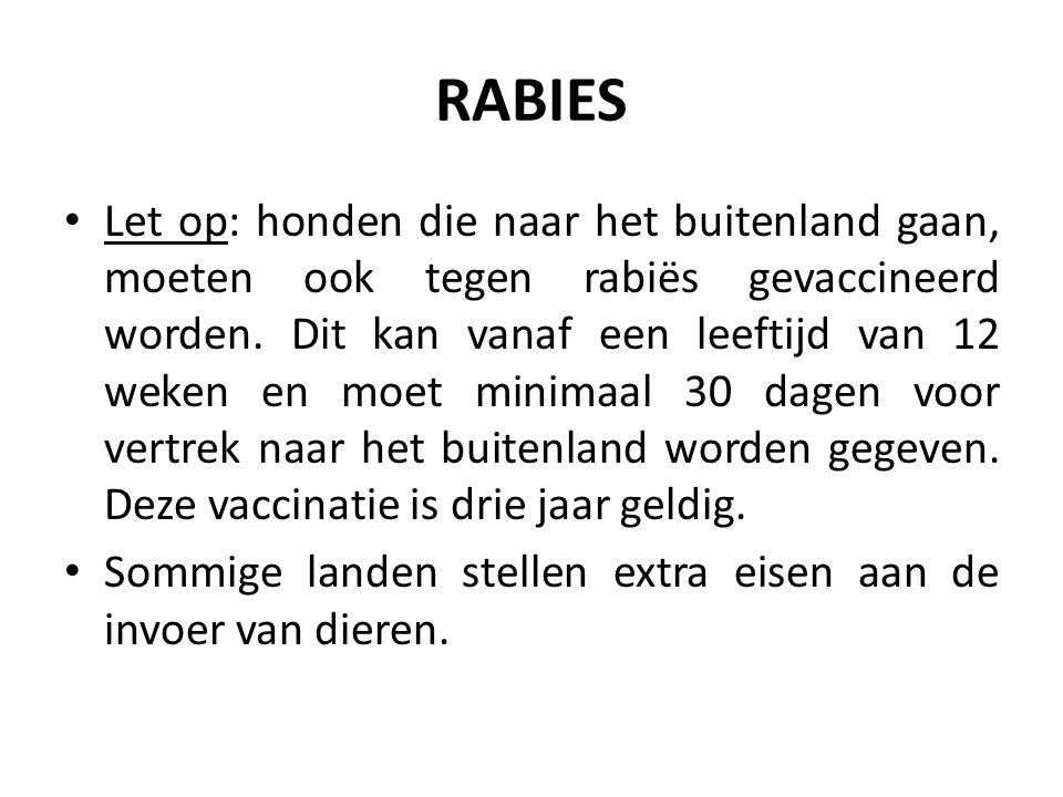 RABIES Let op: honden die naar het buitenland gaan, moeten ook tegen rabiës gevaccineerd worden.