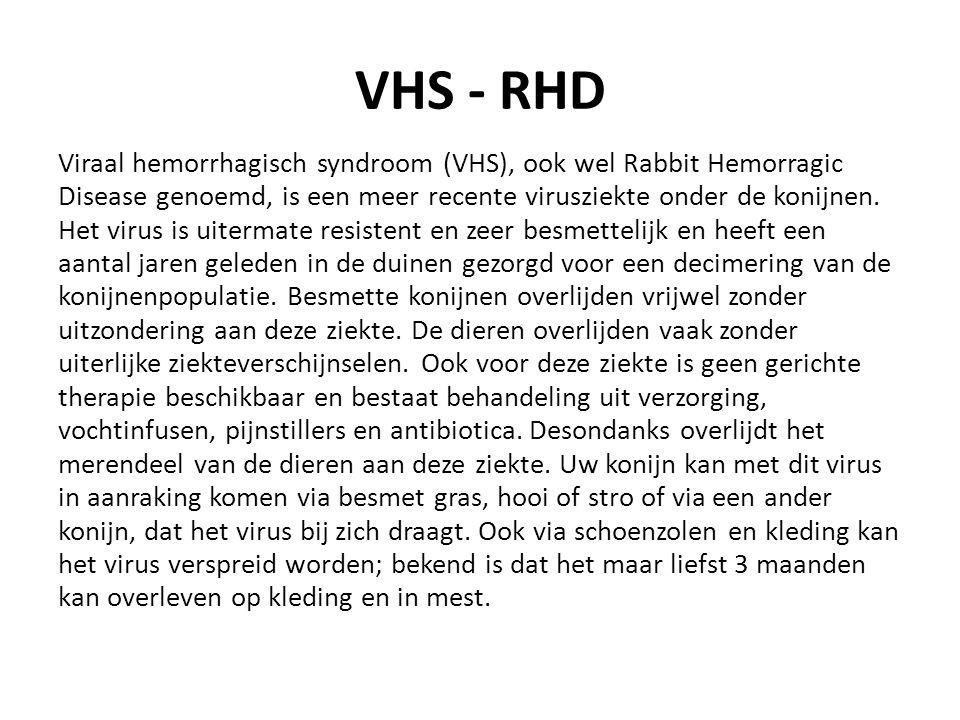 VHS - RHD Viraal hemorrhagisch syndroom (VHS), ook wel Rabbit Hemorragic Disease genoemd, is een meer recente virusziekte onder de konijnen.