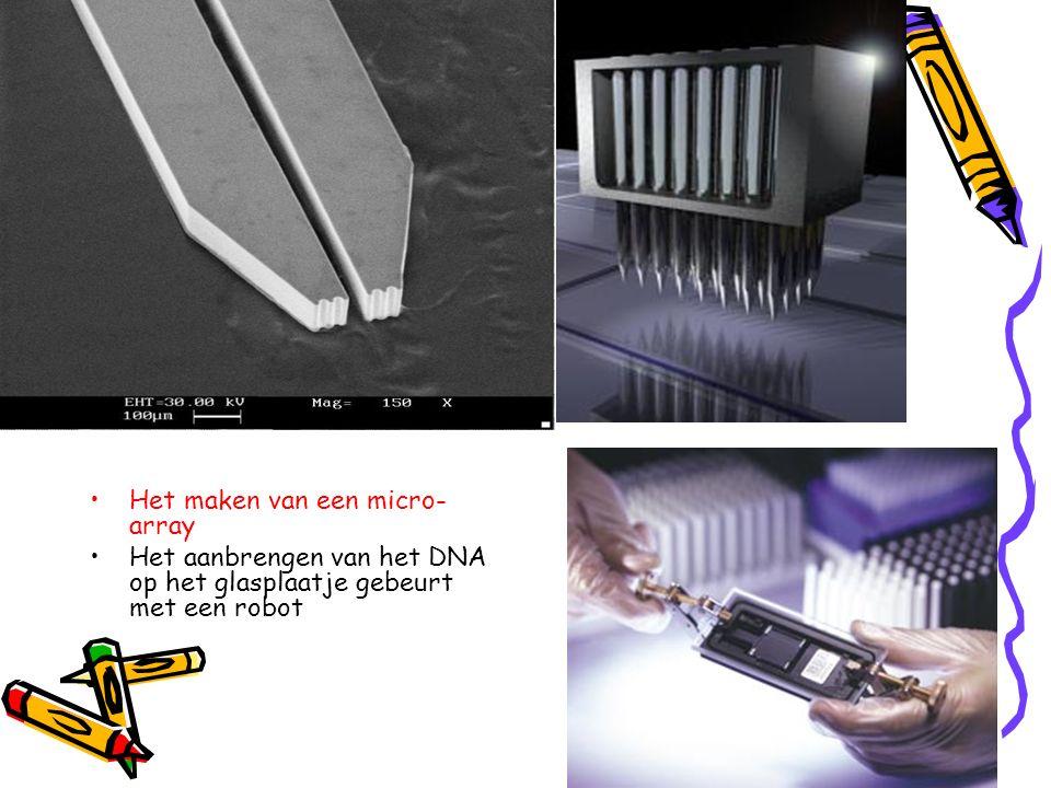 Het maken van een micro- array Het aanbrengen van het DNA op het glasplaatje gebeurt met een robot