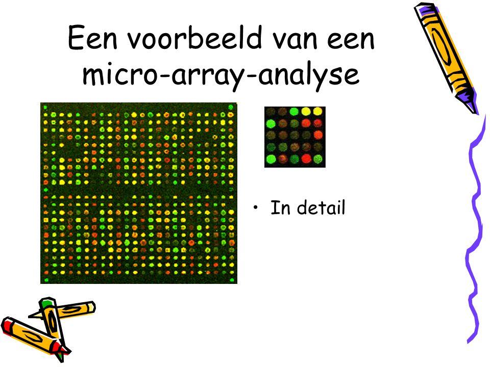 Een voorbeeld van een micro-array-analyse In detail
