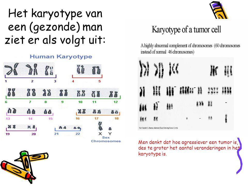 Het karyotype van een (gezonde) man ziet er als volgt uit: Men denkt dat hoe agressiever een tumor is, des te groter het aantal veranderingen in het k