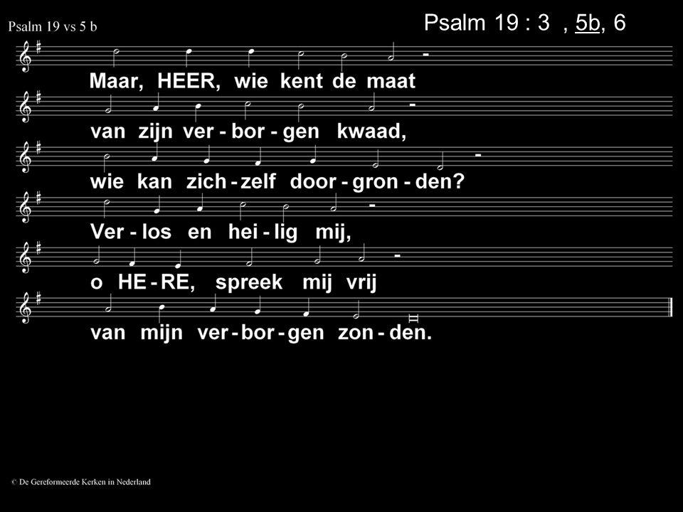 Psalm 19 : 3a, 5b, 6a