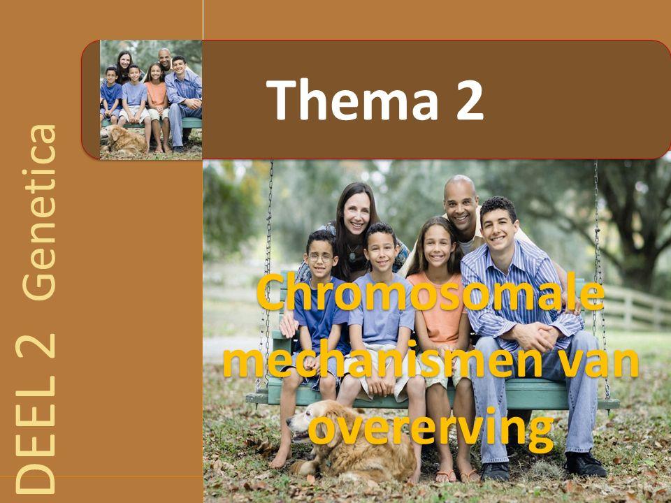 4.3.4 Opstellen van een genenkaart: mapping Kleine recombinatiefrequentie tussen gekoppelde genen  weinig crossing-over  genen kort bij elkaar Grote recombinatiefrequentie tussen gekoppelde genen  veel crossing-over  genen ver van elkaar Recombinatiefrequentie is dus een relatieve afstandsmaat tussen genen  Eenheid van afstand tussen genen  centiMorgan (cM)  1% recombinatiefrequentie = 1cM