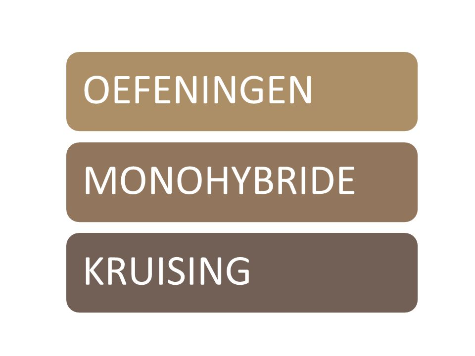 OEFENINGENMONOHYBRIDE KRUISING