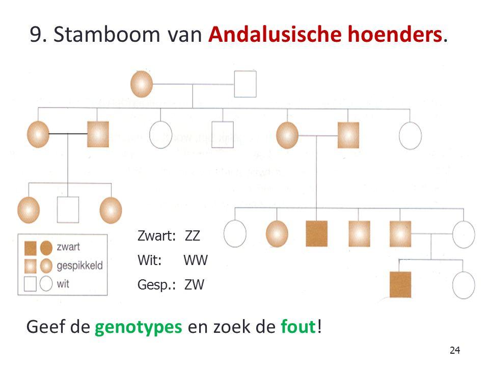 24 9.Stamboom van Andalusische hoenders. Geef de genotypes en zoek de fout.