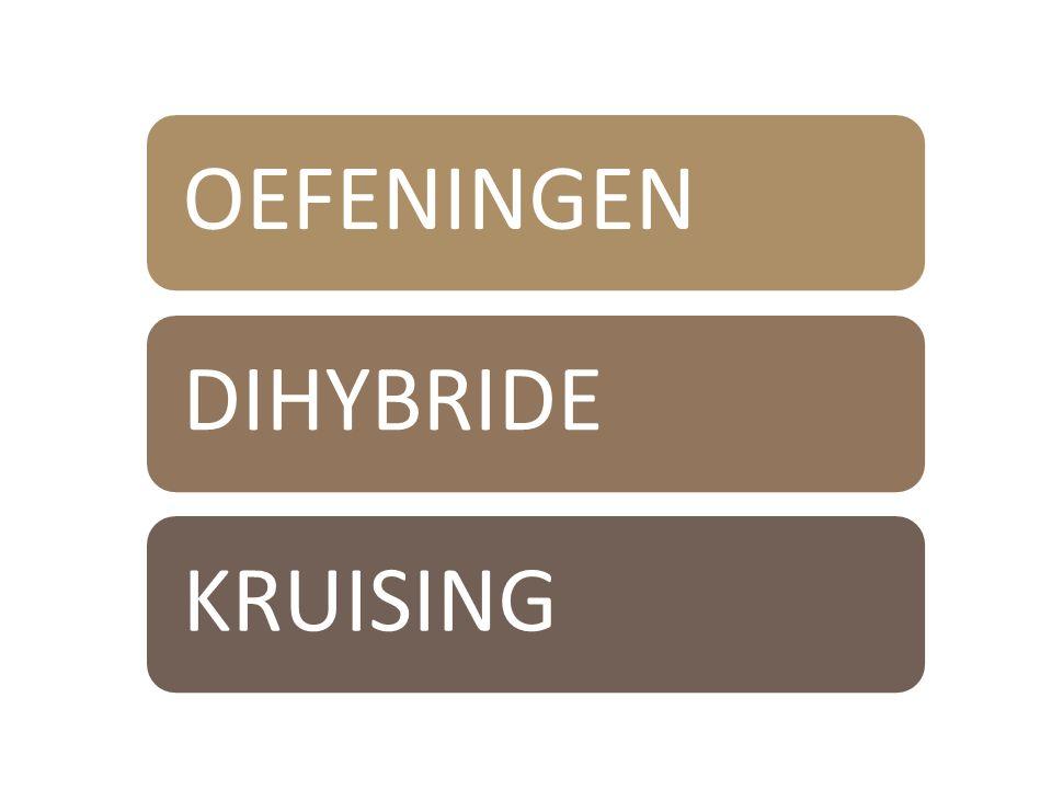 OEFENINGENDIHYBRIDE KRUISING