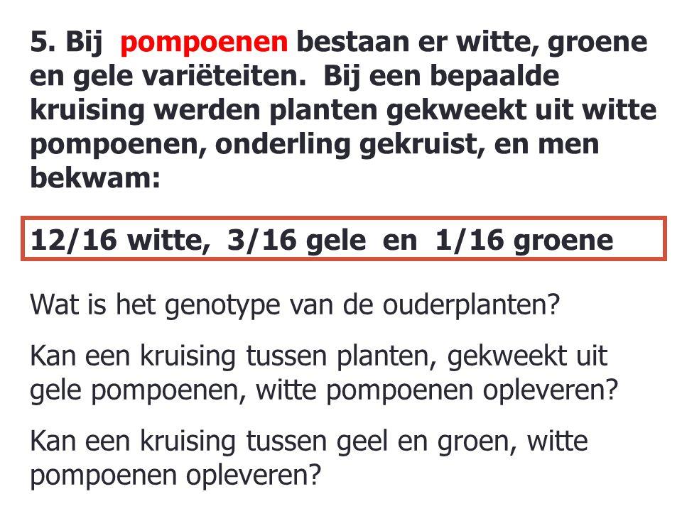 60 5.Bij pompoenen bestaan er witte, groene en gele variëteiten.