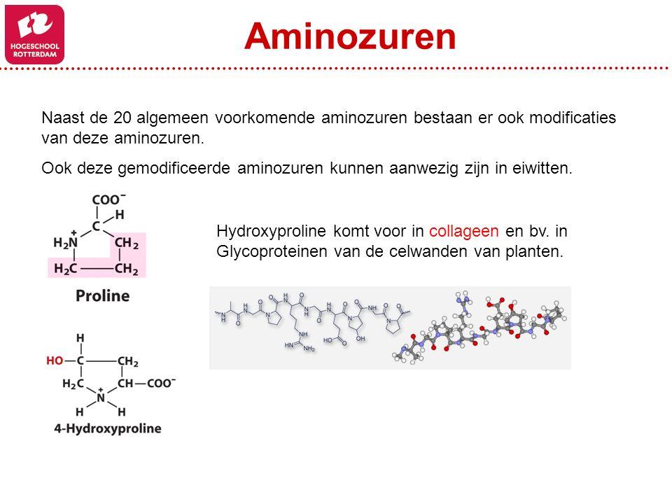 Naast de 20 algemeen voorkomende aminozuren bestaan er ook modificaties van deze aminozuren. Ook deze gemodificeerde aminozuren kunnen aanwezig zijn i