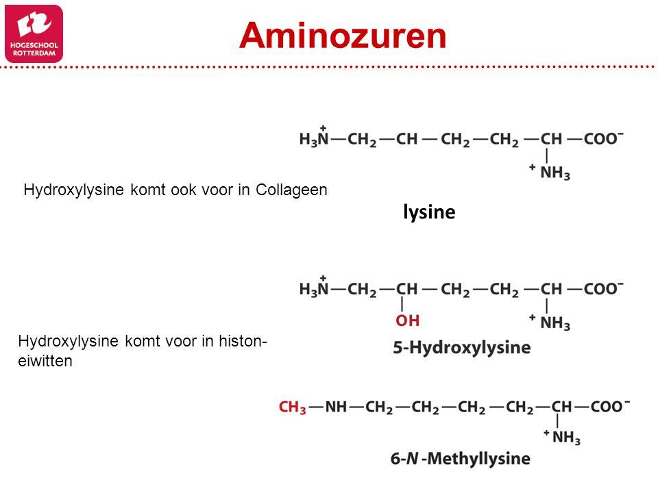 lysine Aminozuren Hydroxylysine komt ook voor in Collageen Hydroxylysine komt voor in histon- eiwitten