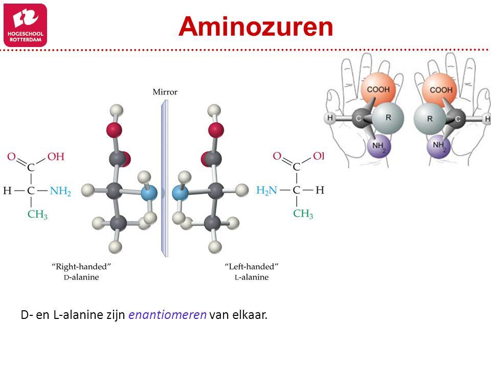 D- en L-alanine zijn enantiomeren van elkaar. Aminozuren