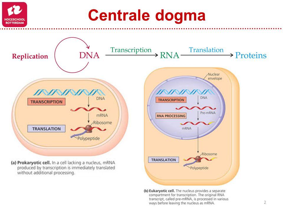 2 Centrale dogma