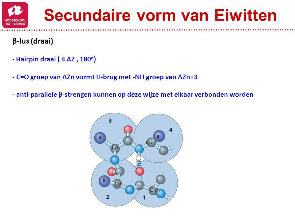 β-lus (draai) - Hairpin draai ( 4 AZ, 180 o ) - C=O groep van AZn vormt H-brug met -NH groep van AZn+3 - anti-parallele β-strengen kunnen op deze wijz