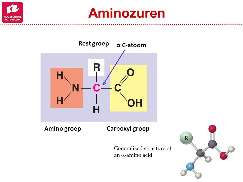 Amino groepCarboxyl groep Rest groep α C-atoom Aminozuren
