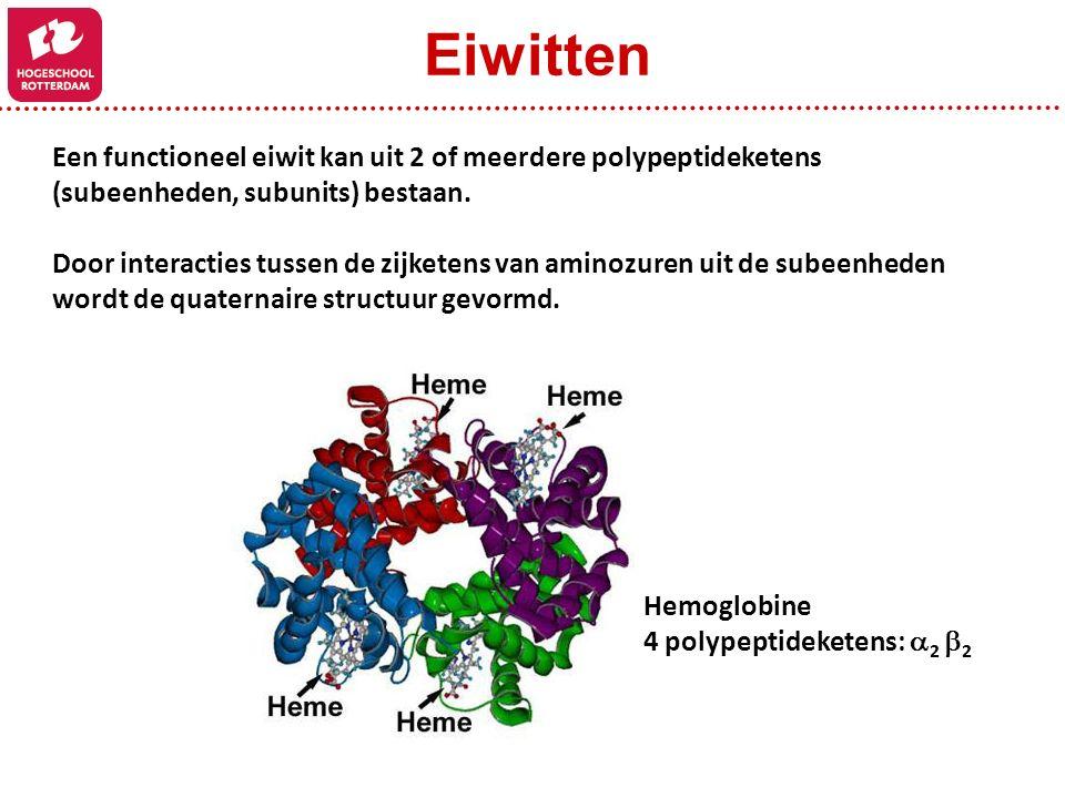 Een functioneel eiwit kan uit 2 of meerdere polypeptideketens (subeenheden, subunits) bestaan. Door interacties tussen de zijketens van aminozuren uit