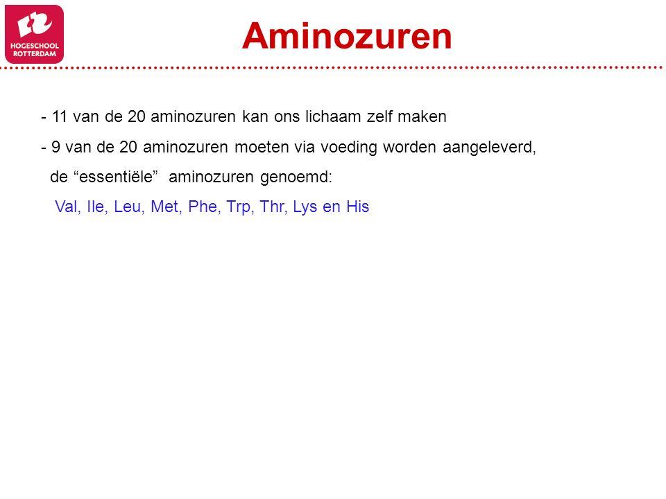 """- 11 van de 20 aminozuren kan ons lichaam zelf maken - 9 van de 20 aminozuren moeten via voeding worden aangeleverd, de """"essentiële"""" aminozuren genoem"""